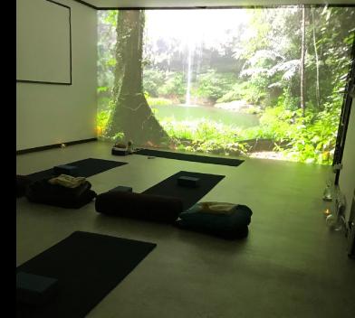 春日井市高蔵寺にあるヨガスタジオ My Yoga Studio(マイヨガスタジオ)初心者歓迎!楽しいヨガ・アットホームなヨガスタジオです!
