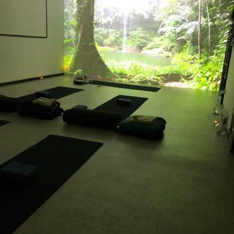 春日井市高蔵寺にある My Yoga Studio(マイヨガスタジオ)|春日井市高蔵寺にあるヨガスタジオ|プロジェクターを使ったビジュアルヒーリングヨガを行なっています。