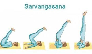 ラブレターD7 キャンドルのポーズ(Sarvangasana)から鋤(すき)のポーズ(Halasana)